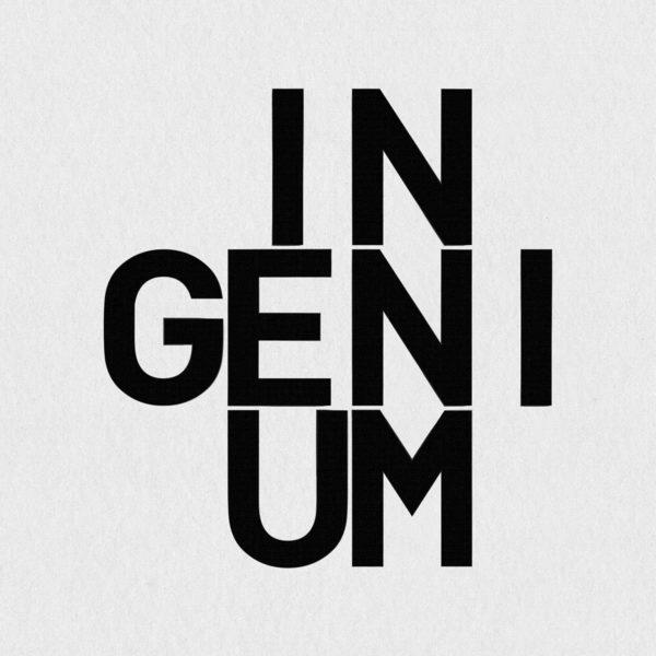 Ultrapulp Alpha Ingenium. Estampe typographique contemporaine originale signée.La série Alpha emprunte ses sources à la littérature, à l'histoire, au monde des affaires et de l'entreprise ou encore au langage de la pop culture. Cette édition limitée tiré à partsur toile par l'artiste, utilise une grille et l'emploi d'intervalles inattendus entre les mots et les lettres pour créer une rupture de sens.